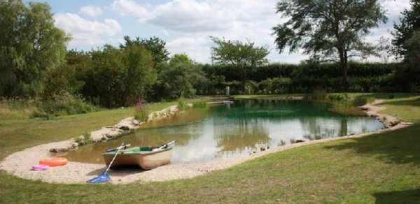 Our natural swimming pond build the w hole disaster for Arizona pond and pool company