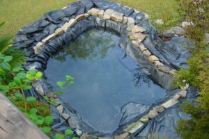Our Natural Swimming Pond Build:  Snakes and Ladders