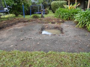 Our Natural Swimming Pond Build:  The (W)hole Disaster