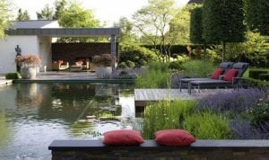 Is a natural swimming pond the solution to swimming pool headaches?