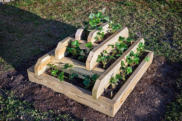 How To Make A Slot Together Pyramid Planter Your Projects Obn