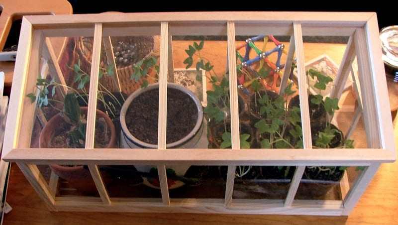 How To Build A Miniature Greenhouse