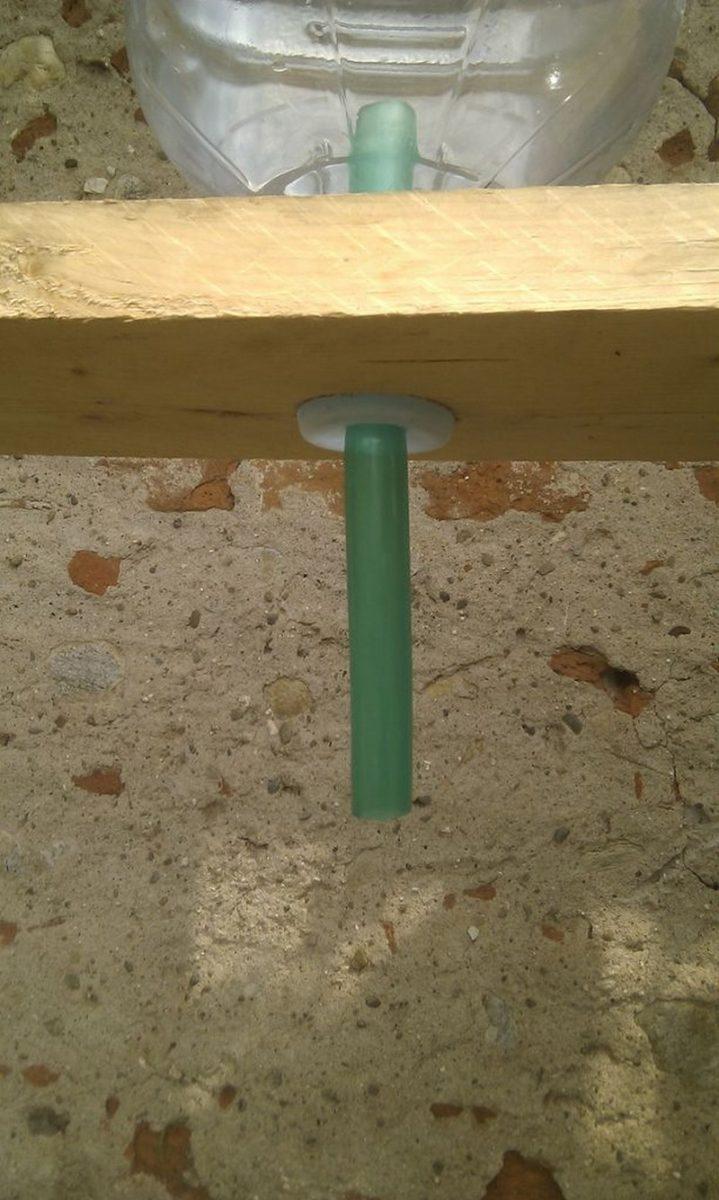 DIY Self Watering Garden