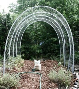 DIY Hoop House Trellis