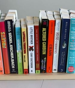 DIY Inverted Bookshelf