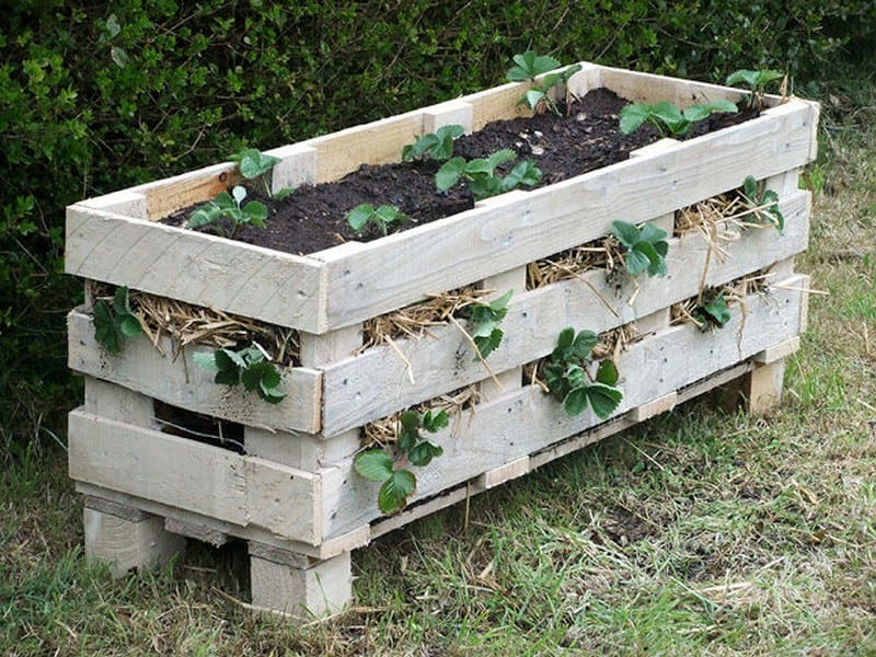 PalletStrawberryPlanter01