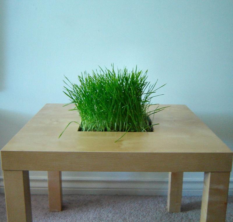 Modifying Table