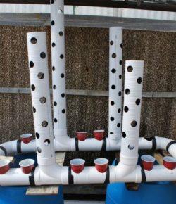 Gravity-Based Aquaponic System