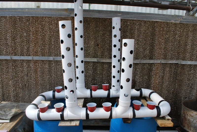 Easy-build, gravity-based, PVC aquaponic system