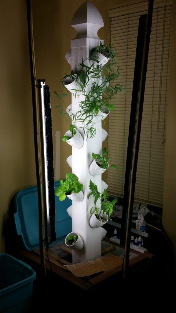 Vertical Aquaponic Garden