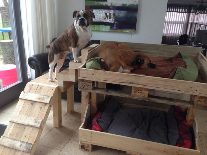 Diy Dog Bunk Bed 04 Your Projects Obn