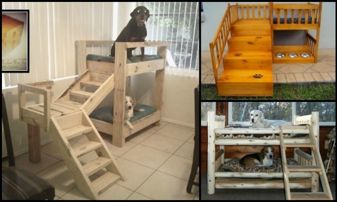DIY Dog Bunk Bed