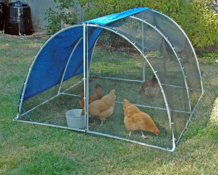 Build a pvc chicken tractor your projects obn for Pvc chicken tractor plans