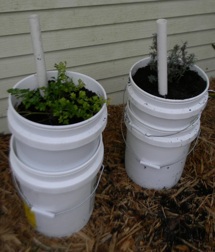 Learn How To Make A Self Watering Tomato Planter Your