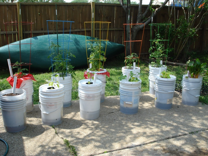 Learn how to make a self watering tomato planter your for Gardening 5 gallon bucket