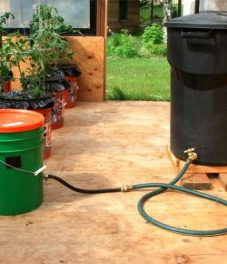 Self-Watering Tomato Planter