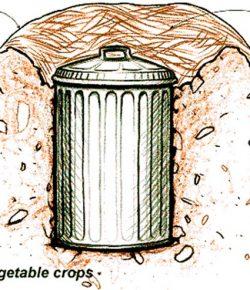 Trash Can Root Cellar