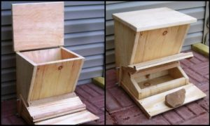 Minimize feed waste by building a treadle chicken feeder for your chooks!