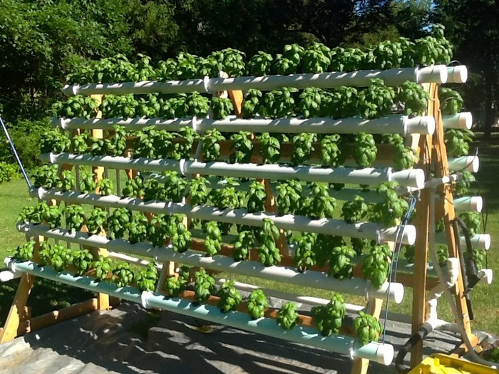 Build an Efficient A-Frame Hydroponic System!