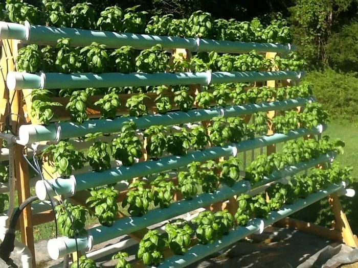 Build An Efficient A Frame Hydroponic System Your
