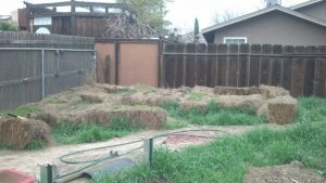 Learn how to grow a straw bale garden!