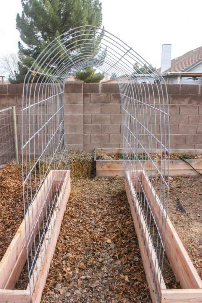 Trellis-and-Raised-Garden-Bed-Combo-03 – Your Projects@OBN on pergolas trellis designs, home trellis designs, garden plants trellis designs, grapes trellis designs, raised garden beds landscaping, raised garden beds landscape design,
