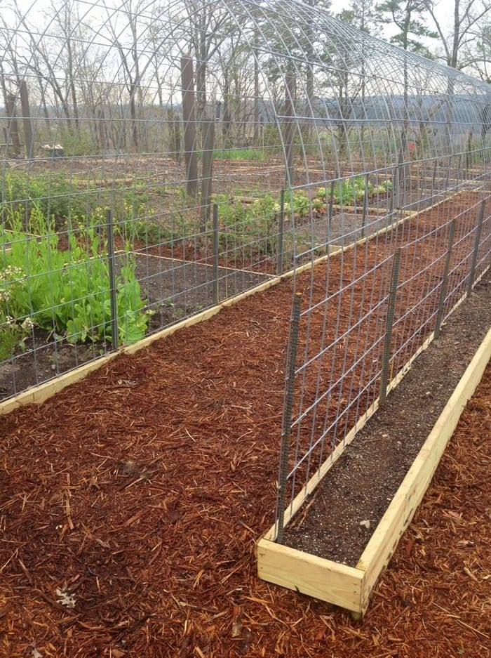 Completely new Grow your own produce with and a trellis and raised garden box  VC95