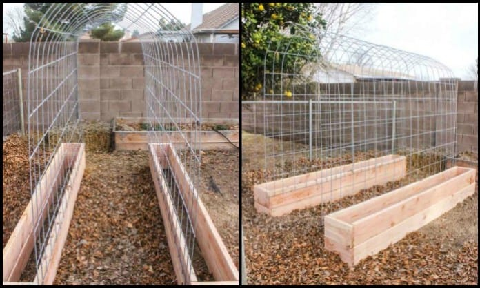Grow your own produce with and a trellis and raised garden box combo