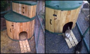 Turn a cable spool into a duck house!