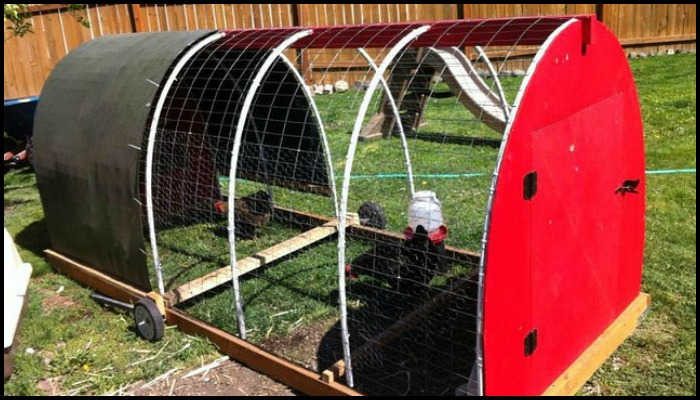 Build your own chicken tractor!