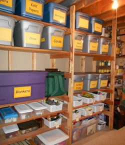 Storage Bins in Shelves