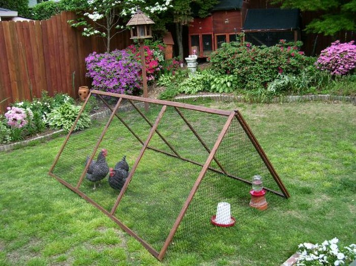 Collapsible Chicken Run