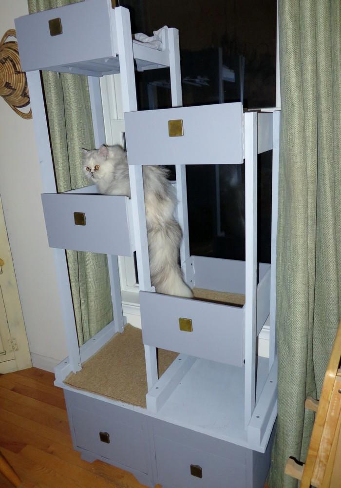 cat mate door installation