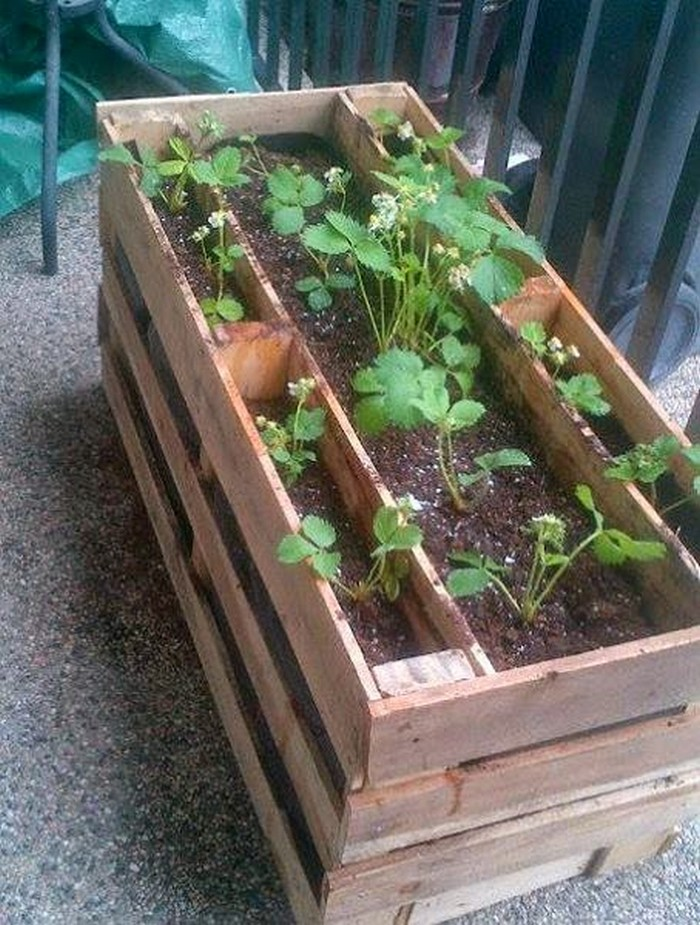 Make a pallet planter box for beautiful cascading flowers