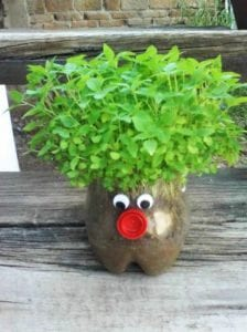 Fun And Creative Crafts With Recycled Plastic Soda Bottles