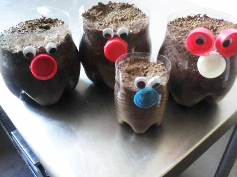 Green hair planter recycled plastic bottles