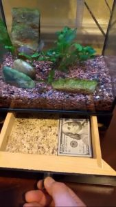 DIY Fish Tank Secret Hiding Place