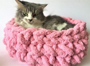 DIY Chunky Knitted Cat Bed