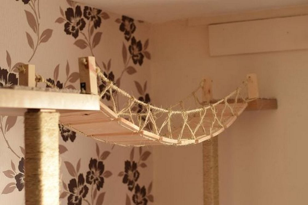 Diy Cat Rope Bridge Your Projects Obn