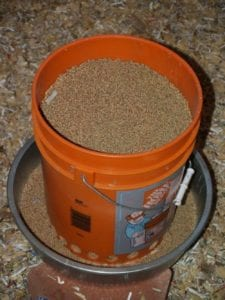 How to Turn a Bucket into a Chicken Feeder