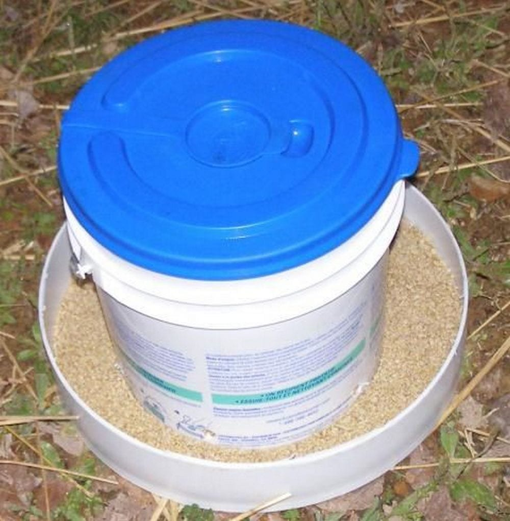 This chicken feeder is simple, easy to make, and it serves its purpose well.